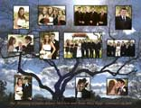 Wedding Celebration montage