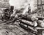 Railroad Logging