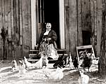 Maggie Sullivan with Cat and Chickens